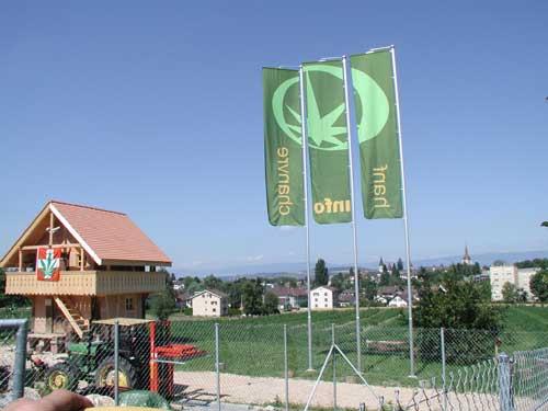 Hanf-Info Schweiz